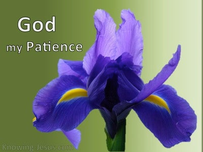 God, My Patience (devotional) (purple)